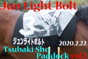 二代目雨男襲名 ジュンライトボルト@つばき賞(2020.2.22) (1)
