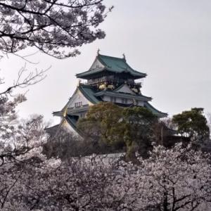 2020年春 大阪城周辺の桜