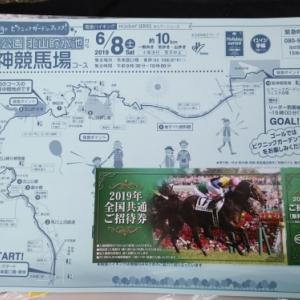 阪急ハイキング  北山公園・北山貯水池から阪神競馬場・芝生広場コース