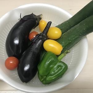 ☆野菜高騰?☆