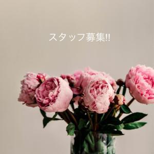 セリーンネイル スタッフ募集!!  岐阜関市セリーンネイル