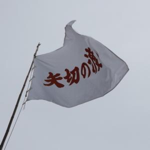 矢切の渡し船で都県をまたぐ!