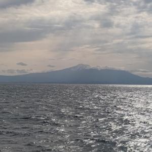 フェリーでGoTo日本海⑨ 「らいらっく」で秋田から新潟へ