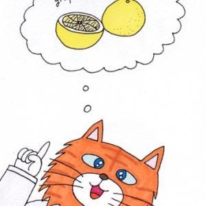 グレープフルーツ大好き!
