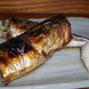 秋の魚介類