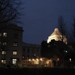 見えるは国会議事堂