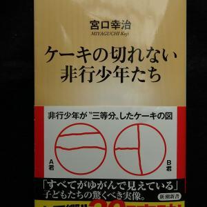 『ケーキの切れない非行少年たち』宮口幸治著 紹介(2)