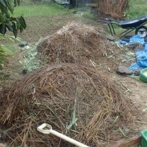 晴耕雨読の自然菜園「雨の日に、堆肥の切り返し」