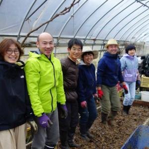 自然菜園スクール3月【長野校】「自然育苗タネ採りコース」踏み込み温床の踏み込み&土のブレンドと種まき