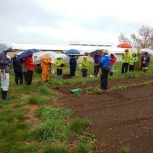 雨の中の野良仕事 自然菜園スクール【安曇野校】『自然菜園マスターコース』
