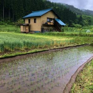 超農繁期part5前半 久々の雨で、一休み。今年の田植えは、さすがに疲れた~。