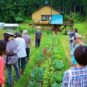オンライン自然菜園セミナー3連ちゃんの2日間無事終了~【根本講座、Q&Aセミナー、自然菜園見学会】