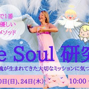 One Soul 研究会