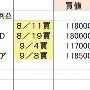 30万円チャレンジー9月14日~18日