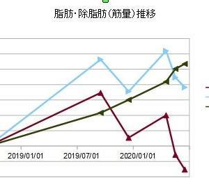 2020/06(04-05)月減量期の結果(新型コロナウィルス緊急事態宣言下)