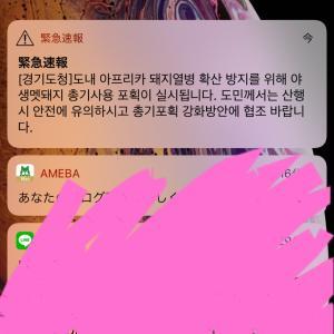 ソウル中★緊急速報にドキッとした結果…