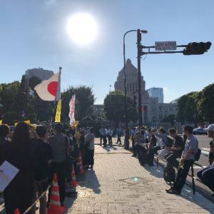 国会議事堂前新生活様式反対デモに行って来ました♪
