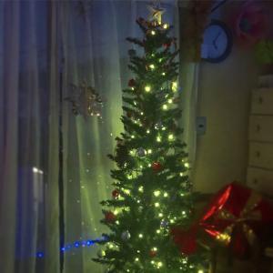 +++やっとクリスマスツリーを出す+++