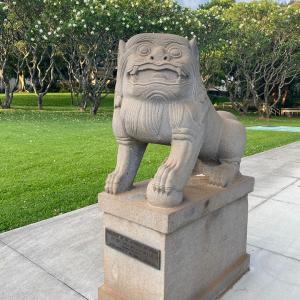 コマさん記録☆ハワイ大学3種盛り