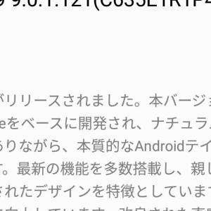 Huawei Honor9の先行アップデート(ベータ版) Android 9 Pieにしてみました。ベンチマークテストの結果もあり。