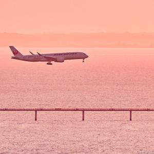 JAL_A350 Centrair
