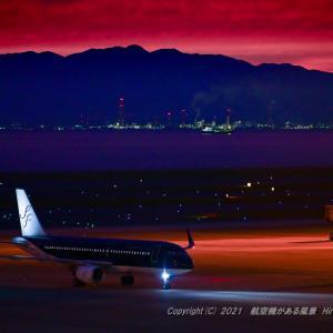 白い尾翼の航空会社