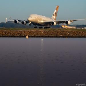 中東からの大型機