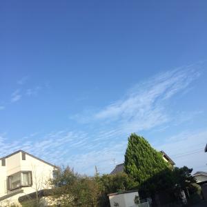 10月なのに異常な暑さやん!ってか⊂⌒⊃;-ω-)⊃