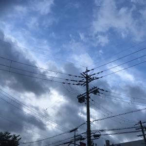 2020/09/07朝ん歩ってかεε=(((((ノ・ω・)ノ