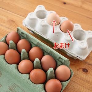 卵農家の卵