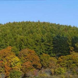 秋のドライブinぐるっとニセコ町♪♪