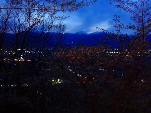 光城山、夜桜登山。