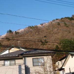 普段トレーニングに使っている山。