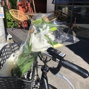 自転車を買ってみた(笑)そしてやってみたかった事をやってみた♪
