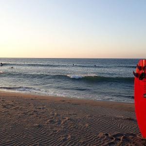 腰前後/今季一番の冷たい海