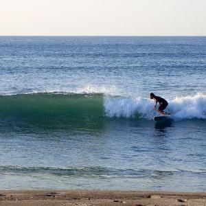 膝~腿、セット腰/小波とサメ日和