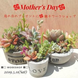 ★母の日企画!多肉植物寄せ植えワークショップ♪親子参加OK♪