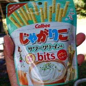 サワークリーム味bits
