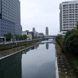 事務所付近の川