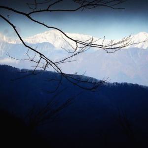 【竜ヶ岳】エコツアー