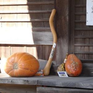 """ここは""""かぼちゃ寺"""""""