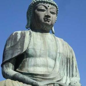 成田山  新生大仏様の願い