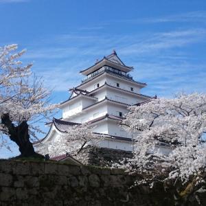 初、鶴ヶ城と桜の撮影