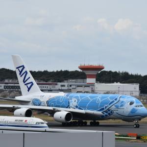 初 成田空港