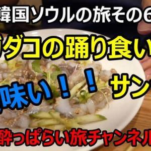 ☆★2019韓国ソウルの旅その6 広蔵市場のユッケ通りで活きテナガダコ(サンナッチ)を食べた話・・・YouTubeに動画UPしました