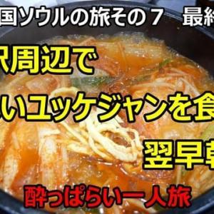 ☆★2019韓国ソウルの旅その7 最終回 雲西駅周辺でユッケジャンを食べて翌朝帰国した話・・・YouTubeに動画UPしました
