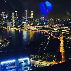 シンガポールでルーマニアディナー交流会を開催!