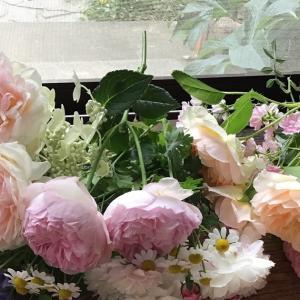 バラを飾りましょう〜