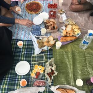 久しぶりのピクニック