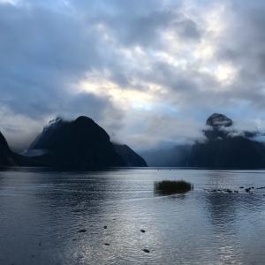 真冬のニュージーランドへ